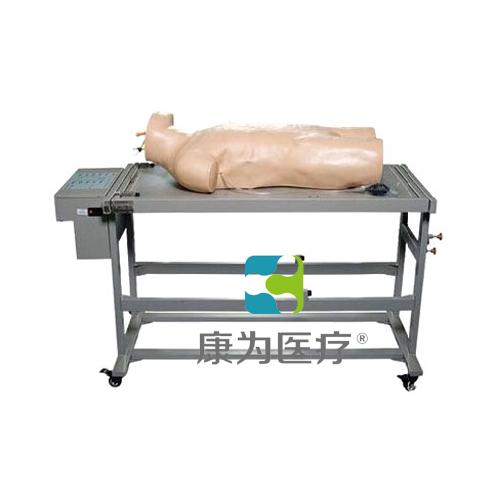 """""""万博体育app登陆医疗""""高级综合穿刺术与叩诊检查技能训练标准化模拟病人"""