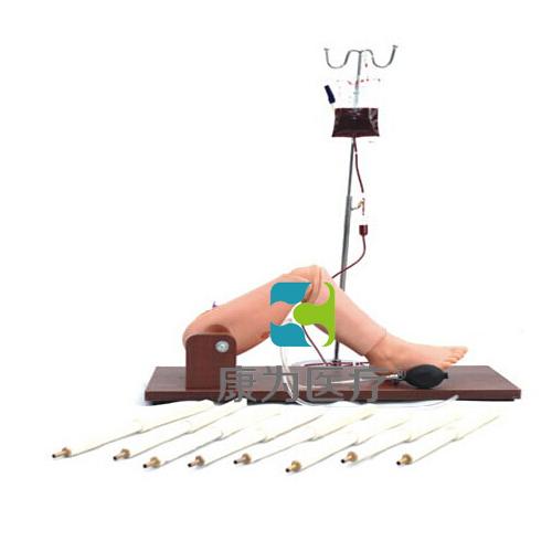 """""""康为医疗""""骨髓穿刺及股静脉穿刺模型"""