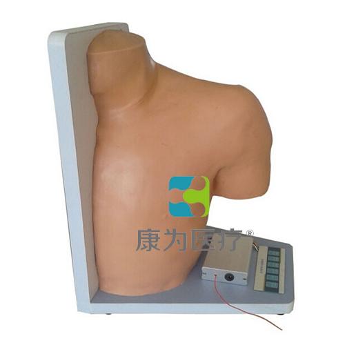 """""""康为医疗""""高级电子肩关节腔内注射模型,肩关节腔内注射操作模型"""