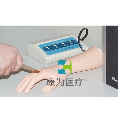 """""""万博体育app登陆医疗""""高级上肢神经损伤检查判断训练仿真模型"""