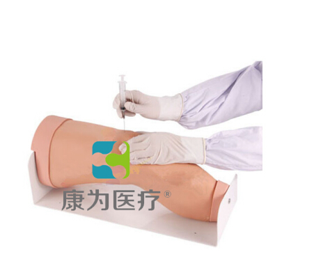 """""""康为医疗""""电子膝关节腔内注射模型,膝关节腔内注射操作模型"""