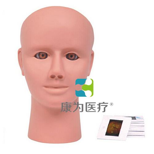 """""""康为医疗""""眼视网膜病变检查模型"""