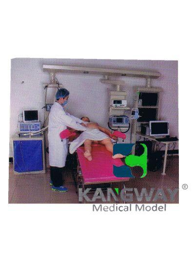 """""""万博体育app登陆医疗""""产妇-高仿真标准化病人实训系统 V1.0"""