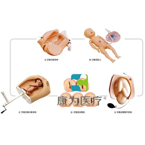 """""""万博体育app登陆医疗""""高级腹部触诊、分娩机转综合模型"""