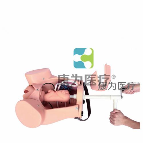 """""""万博体育app登陆医疗""""高级分娩机制综合技能操作模型,分娩机制综合技能操作模型"""