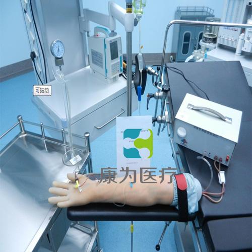 """""""万博体育app登陆医疗""""高级电动脉搏式手臂动脉及静脉穿刺练习模型"""
