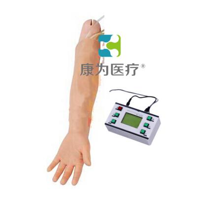 """""""万博体育app登陆医疗""""高级成人动脉穿刺手臂模型"""