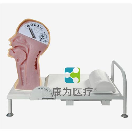 """""""万博体育app登陆医疗""""吞咽机制演示训练模型"""