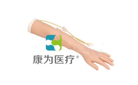 """""""万博体育app登陆医疗""""静脉注射训练手臂模型"""