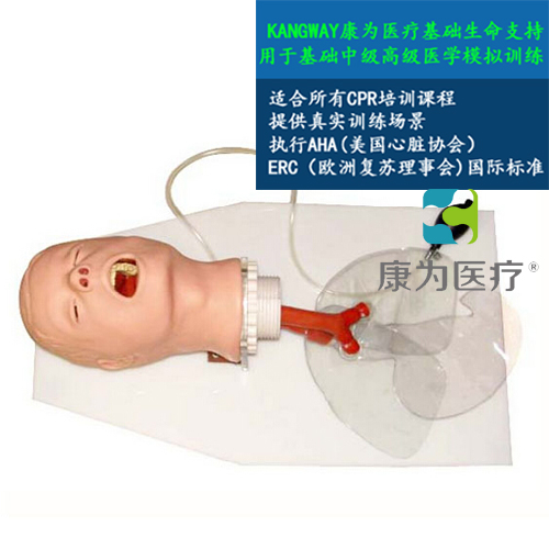 """""""康为医疗""""高级经典成人气管插管训练模型"""