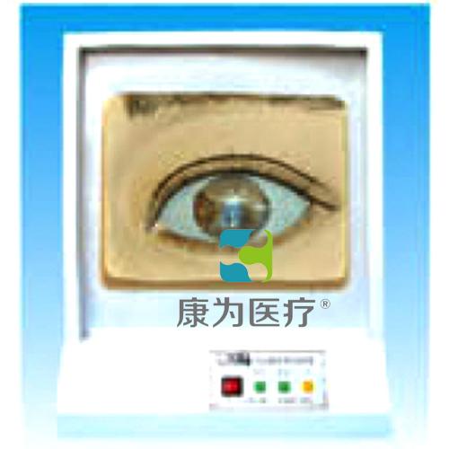 """""""万博体育app登陆医疗""""瞳孔调节模型(光控)"""
