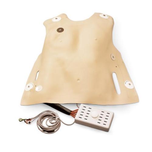 德国3B Scientific®用以练习成人除颤的胸部皮肤