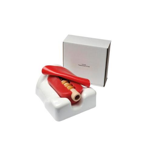 克拉玛依德国3B Scientific®微型气管切开术模拟器,单个包装