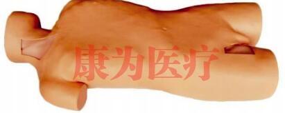 """""""康为医疗""""全身中心静脉穿刺插管模型(升级版)"""