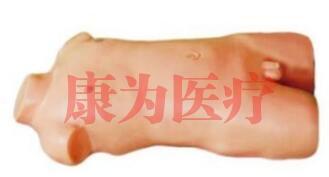 """""""万博体育app登陆医疗""""儿童股静脉与股动脉穿刺训练模型(升级版)"""
