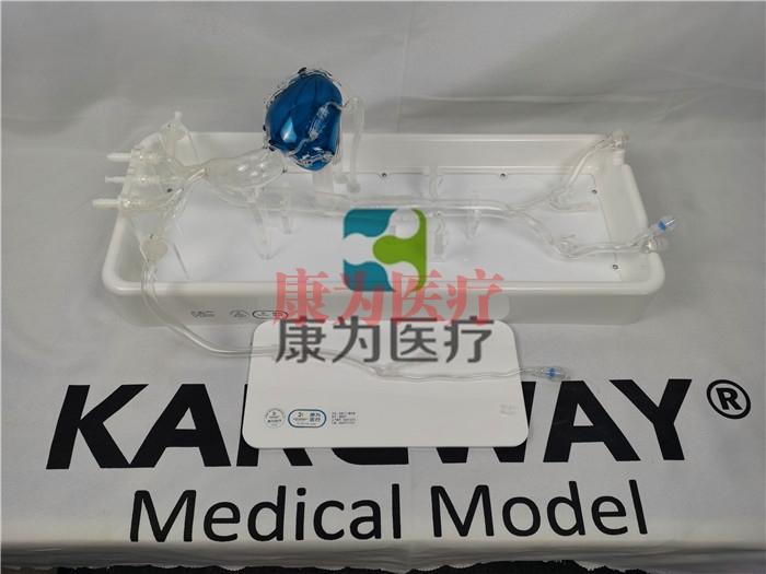 日喀则IM8231冠脉微创手术介入模拟训练模型系统
