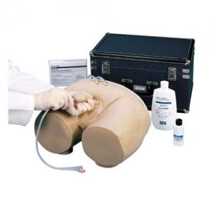 德国3B Scientific®插管训练模拟装置,男性